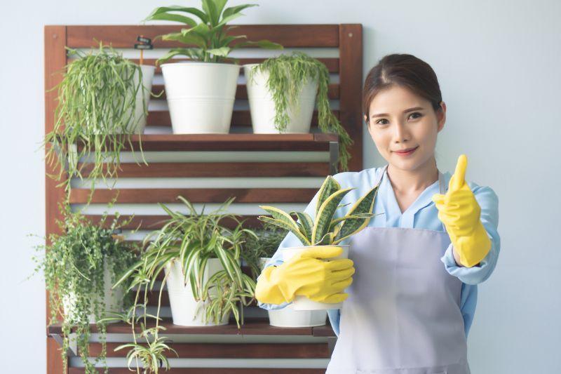 植物 女性 ポイント